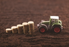 Sara Bonavia considers the income tax aspects of loss relief for farmers