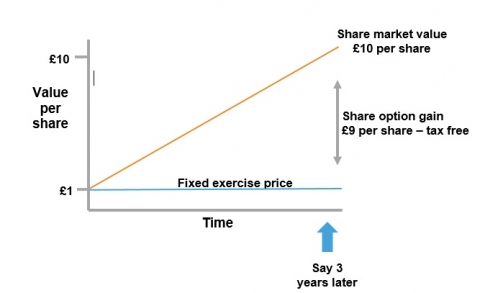 Exercise – no tax to pay