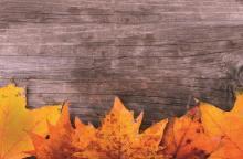 Autumn Statement focus on personal tax – Personal tax